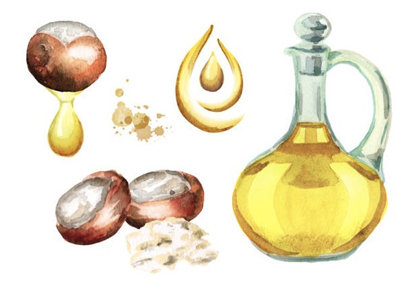 Sheanut Oil
